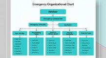 Emergency Organizational Chart Template Samples Chart Organizational Charts Template Examples