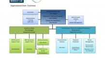 Organizational Chart Template For Laboratory Chart Organizational Charts Template Examples